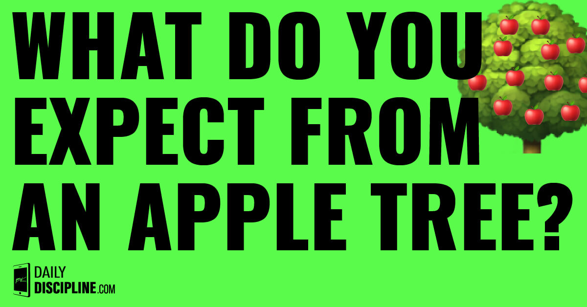 What do you expect from an apple tree?